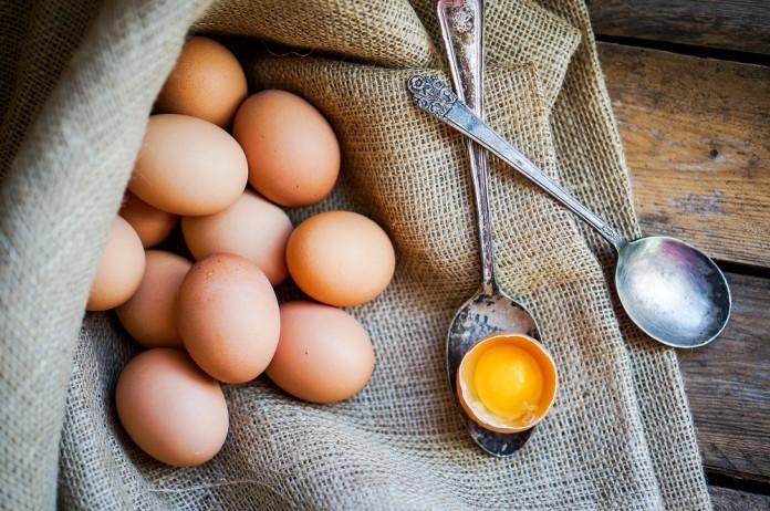 ouă, fipronil