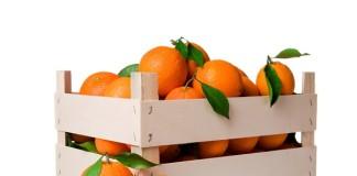 portocale1