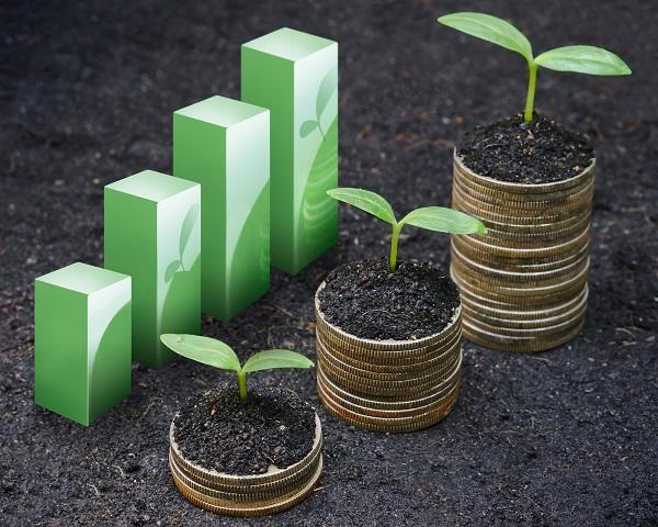 ferme ecologice1, bioeconomie