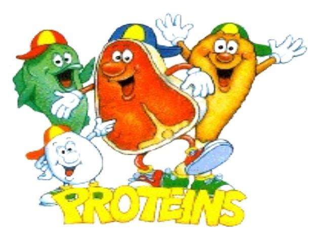 proteine1