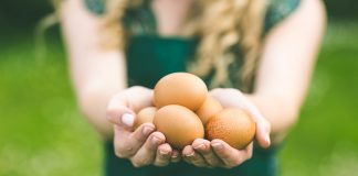 export_ouă