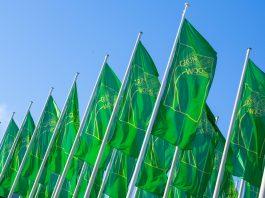 Săptămâna Verde